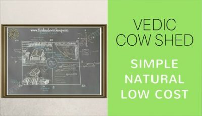 Vedic Cow Shed Design