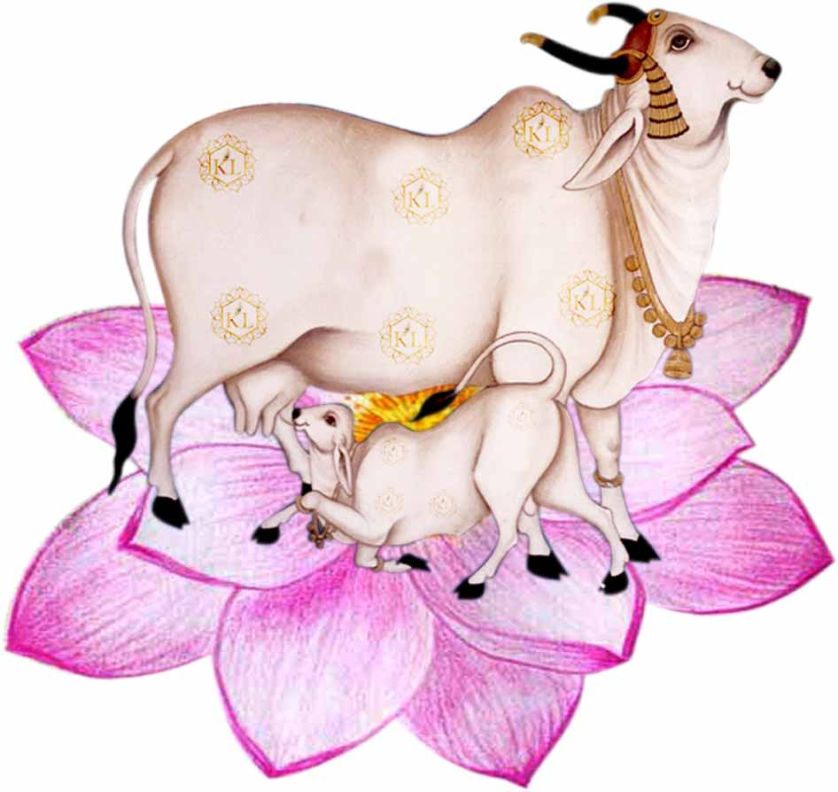 cow-with-lotus