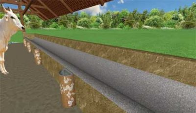 || Gau Lok ||™ – Dairy Farm Layout Planning