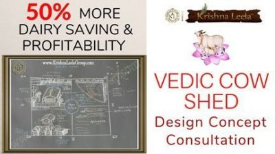 Coming Soon – KL Vedic Cow Shed – Design Concept Consultation