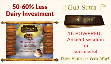 KL ||Gau Sutra||™ – Practical Video Program On Dairy